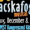Macskafogó musical Budapesten 2015-ben - Jegyek itt!
